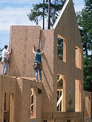 Sips or structural insulated panels Building with sip