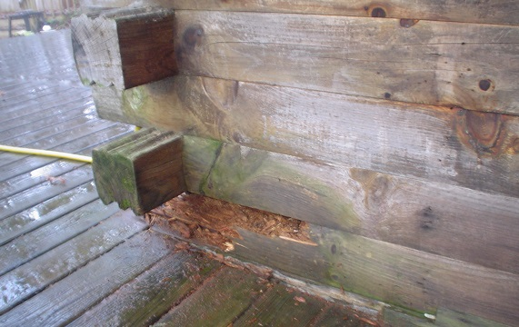 Log repair showing corner.