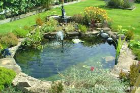 water feature - pond