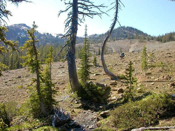 Public land sales - mesquite trail.