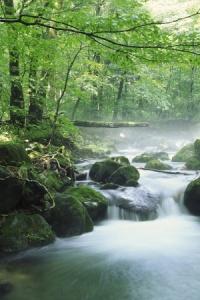 Finance a Log Home - rapids