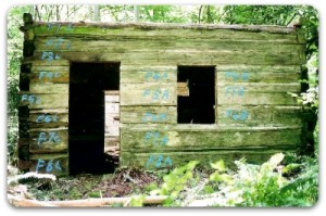 Log shell and walls.