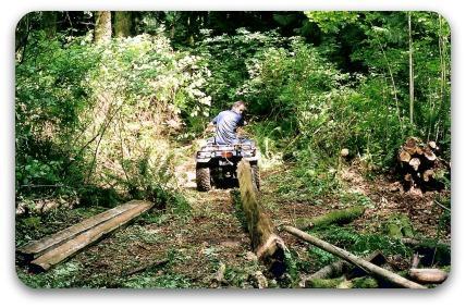 Dragging logs using a 4-wheeler.