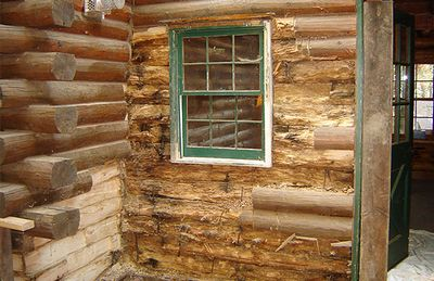 Termite damage to a log home.
