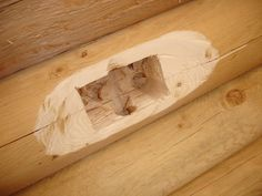 Log cabin wiring - cutting in outlet box.